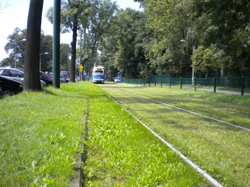 Ex-wiedeńczyk Simmering-Graz-Pauker E1 na torowisku trawiastym w al. 3 Maja w Krakowie