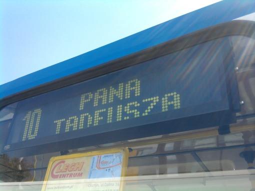 Wariant linii 10 - przystanek końcowy Pana Tadeusza