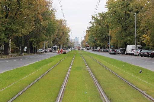 Torowisko trawiaste w ulicy Popiełuszki w Warszawie
