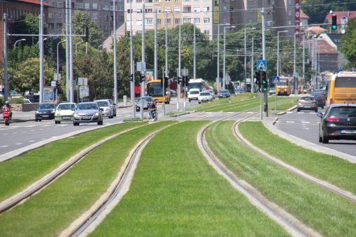Torowisko trawiaste na Vörösvári út w Budapeszcie (12 lipca 2014)
